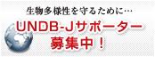 UNDB-Jサポーター募集中!