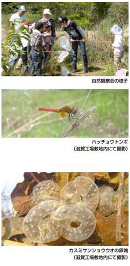 2014sekisuijusshi_shizenkansatsu