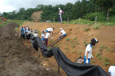 小学校と協力して実施したオキナグサの野生復帰の取り組み