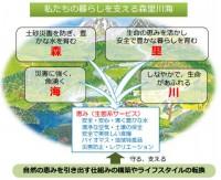 morisatokawaumi