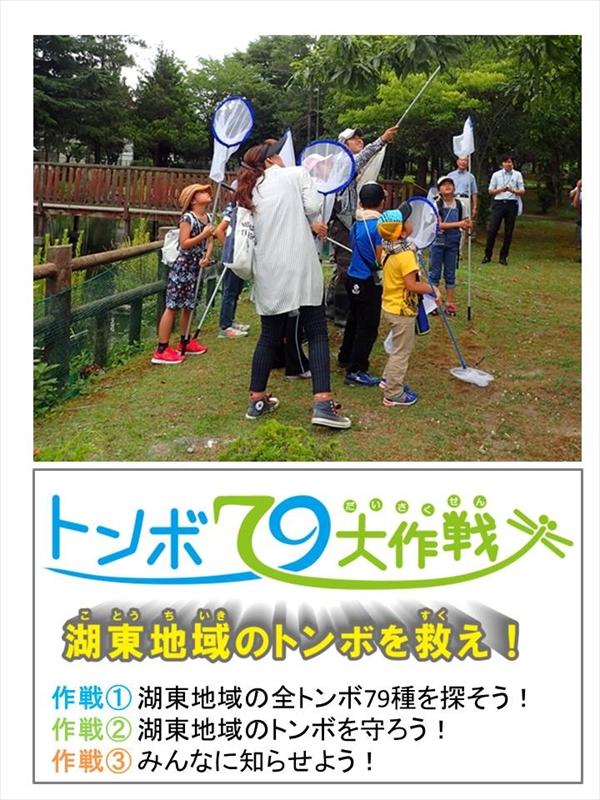 nintei12_kotou