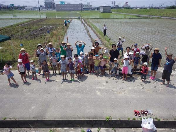 nintei12_okayamadaruma1